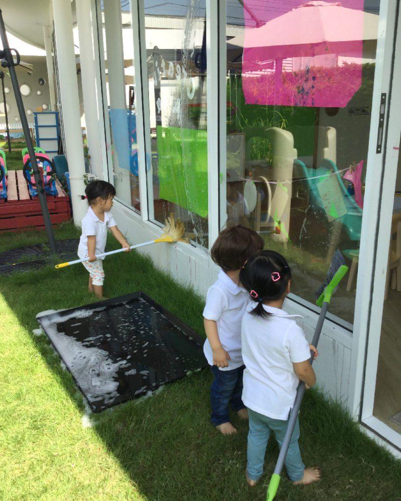 appletree window washing garden
